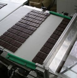 Chocolate Conveying Chocolate Conveyor Belt